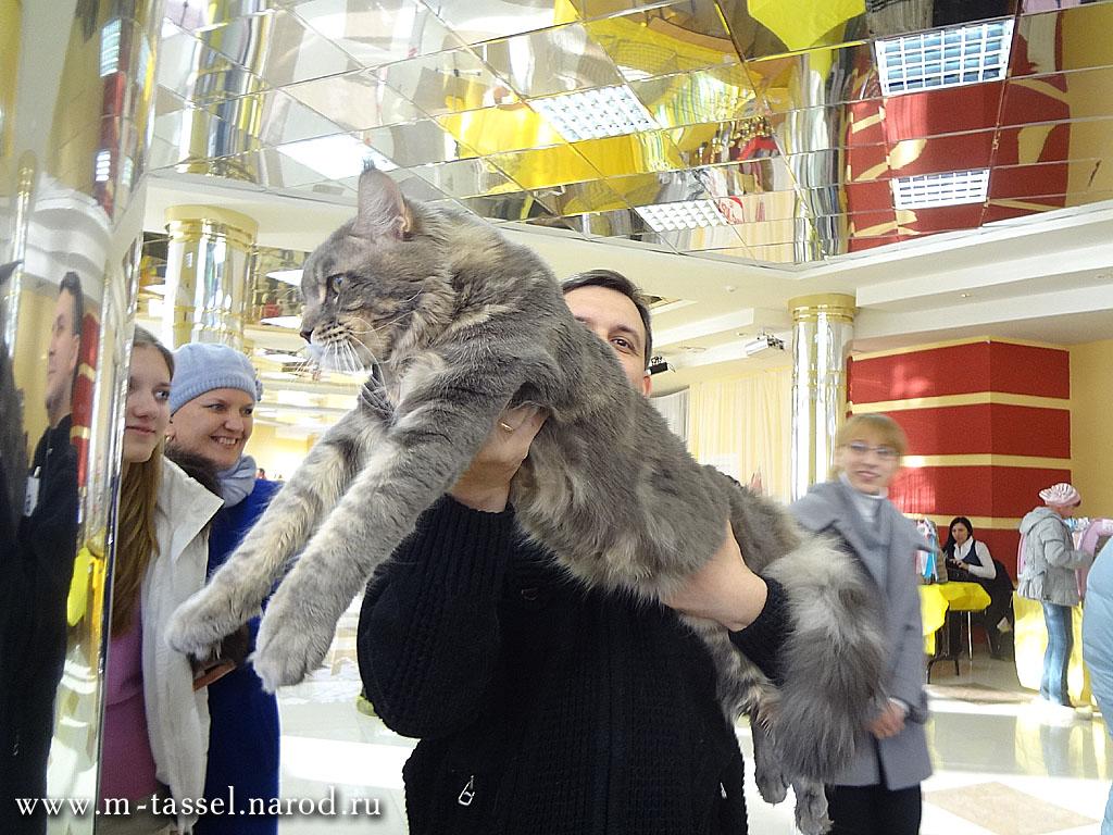 http://tasselmagic.ru/wp-content/uploads/2012/01/03558.jpg