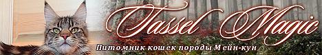 Питомник мейн-кунов Tassel Magic (Тэссел Мэджик) - www.m-tassel.narod.ru